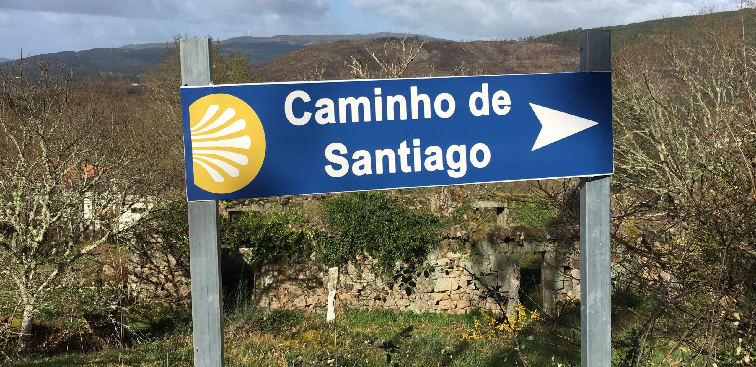 Predicting of the Portuguese Way in times of Covid-19